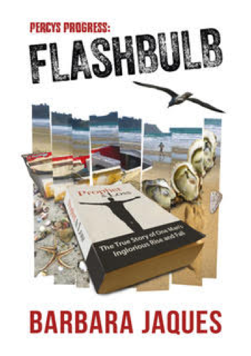 Cover for Flashbulb by Barbara Jaques